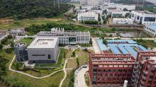 Diretora de laboratório de Wuhan rejeita acusações sobre coronavírus