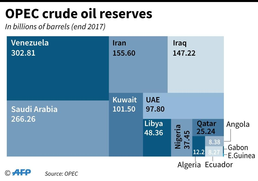 OPEC and its non-cartel partners together account for around half of global output (AFP Photo/AFP)