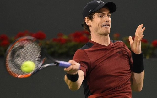 Andy Murray has made a mixed start to the year - USA TODAY Sports