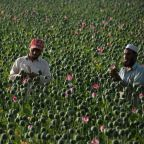 US hits 'Taliban where it hurts' by striking drug labs