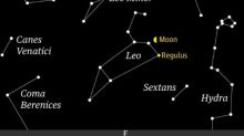 Starwatch: the moon passes the bright star of the lion's breast