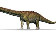 """Los """"dinosaurios argentinos"""", perlas de la prehistoria que hubiesen aplastado al Tiranosaurio Rex"""