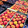 13 fruits ranked by how much sugar they contain
