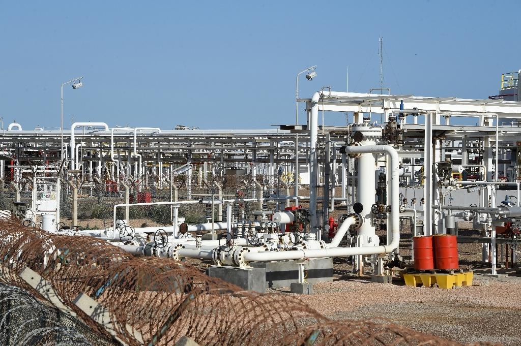 Tunisia says UK's Petrofac halting work at gas plant