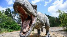 Extinction des dinosaures : une nouvelle étude renforce la thèse de la collision d'un astéroïde avec la Terre
