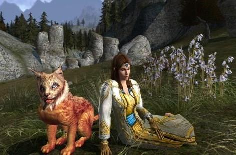 "Kate Paiz answers the ""Whys"" of LotRO's changes"