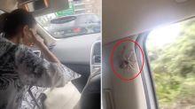 Panic erupts as car passengers discover terrifying stowaway