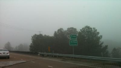 Area Drives Brave Foggy Conditions
