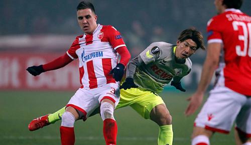 Europa League: Aus der Traum: Köln verliert in Belgrad und scheidet aus