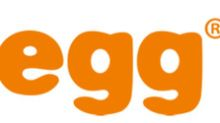 Chegg Announces Closing of $300.0 Million of 0.25% Convertible Senior Notes Due 2023 and Full Exercise of Initial Purchasers' $45.0 Million Option to Purchase Additional Notes