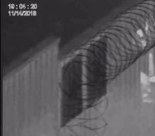 Surveillance Video Captures Men Damaging Razor Wire on Border Fence