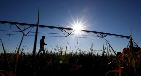 A farmer walks past a mobile irrigation boom on a dying oat crop on his farm in the heart of Australia's Murray-Darling river basin outside Moulamein, west of Canberra, in this August 24, 2007 file photo. REUTERS/Tim Wimborne/Files