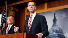 Tom Cotton calls slavery 'necessary evil' in attack on New York Times' 1619 Project