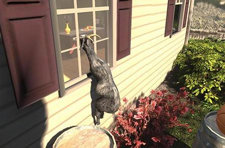 Why Goat Simulator is secretly a Hawk simulator