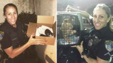 Cop Rescues More Than 60 Stray Cats, Brings Them Back to Police Station
