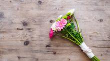 Flower-Power: Mit diesen Tipps halten deine Schnittblumen richtig lange