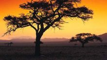 Interested in Investing in Africa? Here's How