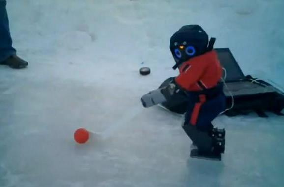DARwIn-OP learns to skate, contemplates NHL career (video)