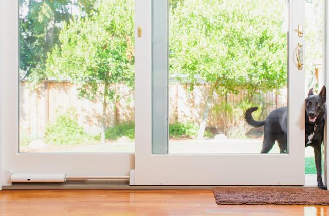Wayzn turns your sliding door into a smart pet entrance