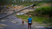 Puerto Rico: renuncia el director de empresa de electricidad