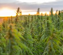 Acreage Holdings Q1 Results Disappoint: Will the Amended Deal with Canopy Growth Help?