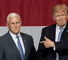 Trump massively undermined Mike Pence's mission to stop Turkey's invasion of Syria, saying publicly that it's none of his business