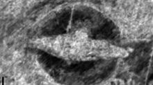 Ancient Viking ship found buried just 20 inches below ground on Norwegian farm