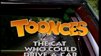 Toonces the Cat