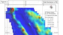 Geophysics Survey (IP) Outlines New Targets at Commander's Pedro Gold Project, Mexico