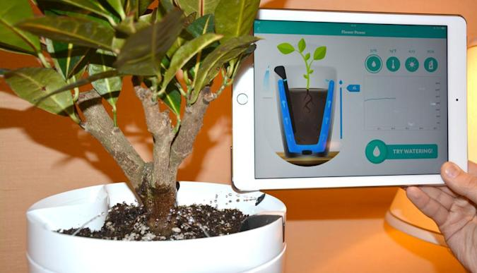 Parrot's latest plant sensors can also do the watering for you