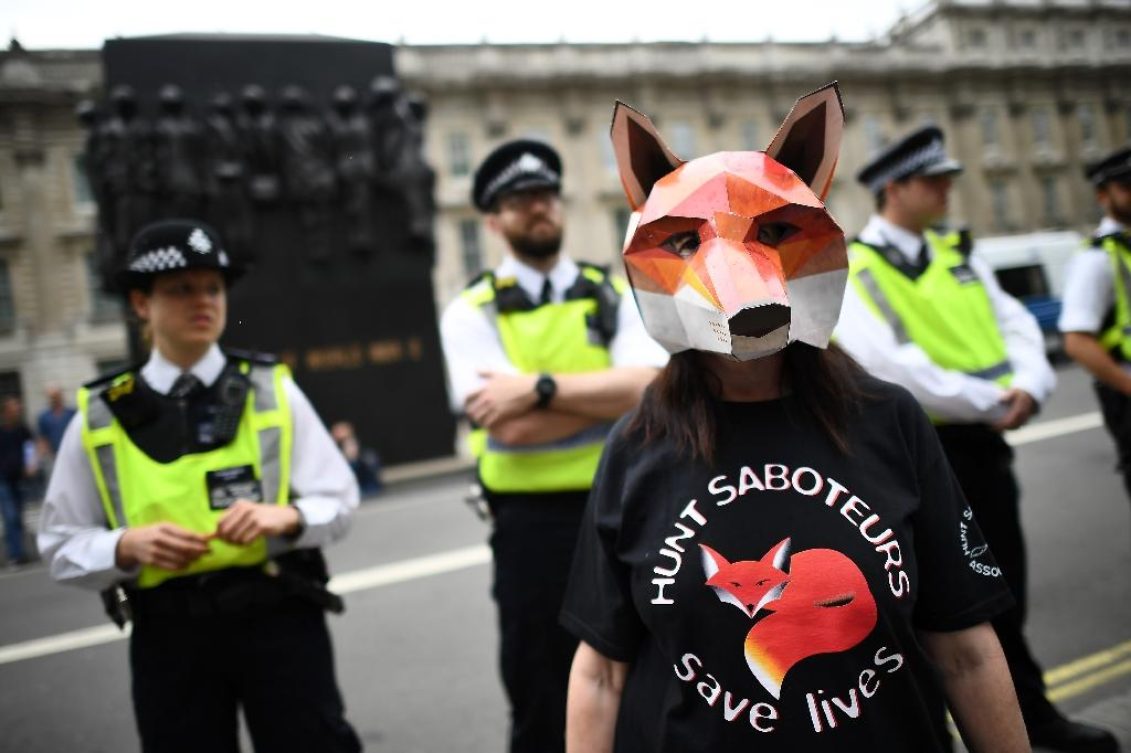 Fox-hunting is unpopular with the British electorate but has the backing of a minority of dedicated Conservative supporters