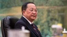 North Korean foreign minister replaced - report