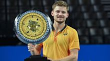 Goffin beats Bautista Agut to win Open Sud de France title