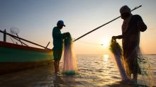 Crackdown on illegal fishing reduces fish production in E. Visayas