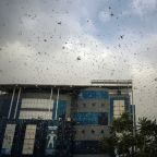 India forced to deal with heatwave and plague of locusts as it battles Covid-19