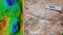 Human, animal footprints dating back 1,20,000 years found in Saudi Arabia's Nefud Desert