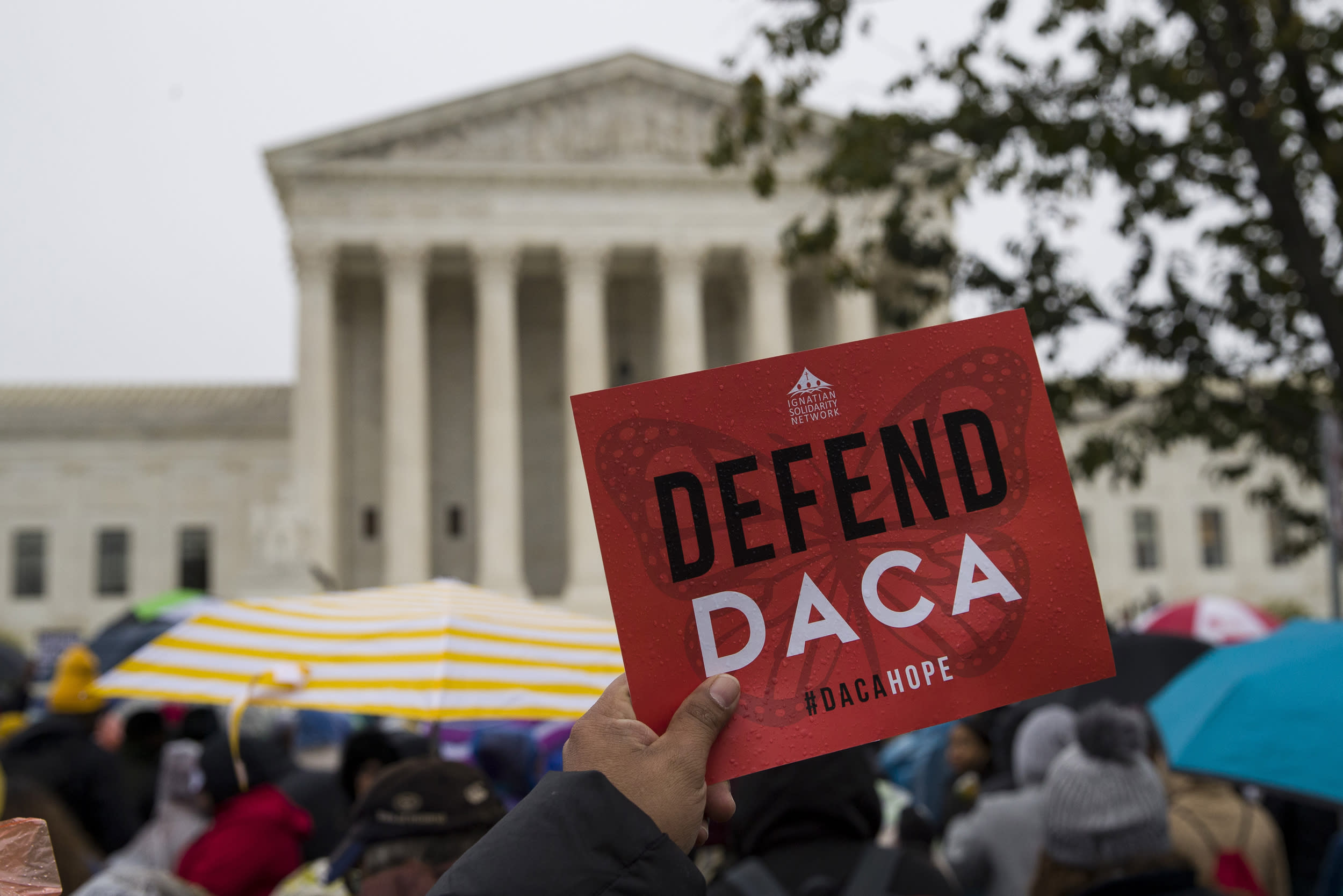 Trump should be taking new DACA applications, not just renewals, groups insist