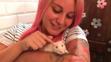Descubre todo lo que necesita una rata doméstica