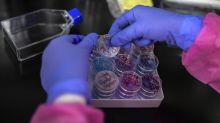 Covid, 239 scienziati all'Oms: attenzione a 'contagio aereo'
