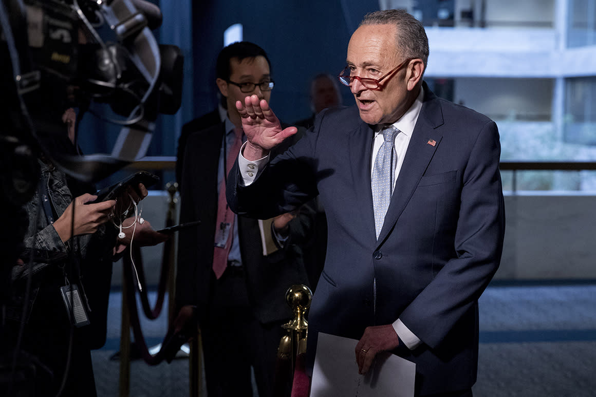 Schumer to introduce legislation preventing Trump from signing stimulus checks