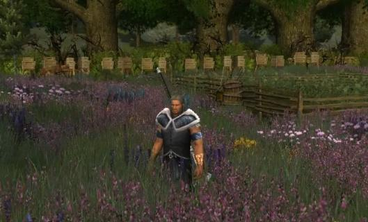 Lord of the Rings Online's Update 15 coming November 5th