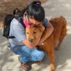 Owner, Dog Reunited After 7 Years Apart Because of Microchip