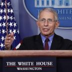 Coronavirus: Dr Fauci warns US death rate could tip '100,000 to 200,000' cases and 'millions' might be infected