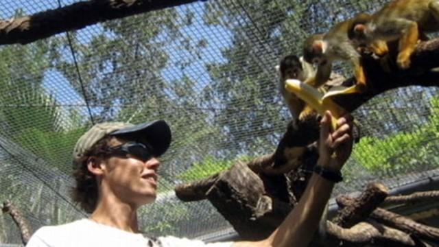 Soth African Chimp Attack: New Details Emerge