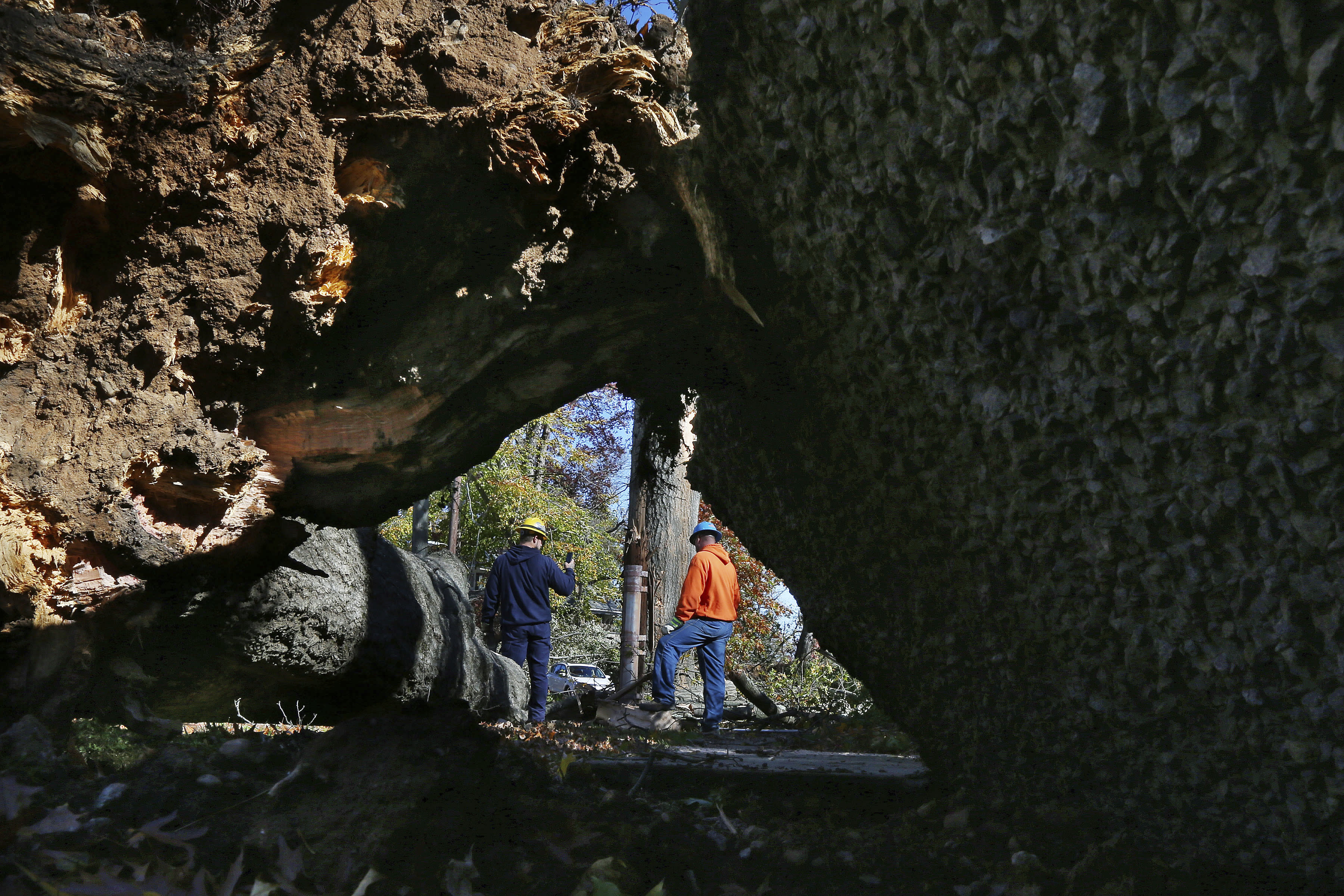 Crews from Madison Electric and Butler Municipal Power and Light work on downed power lines as a large tree and sidewalk pad are lifted on Green Hill Road on Friday, Nov. 1, 2019, in Madison, N.J. The borough was hit by high winds on heavy rain late the night before. (AP Photo/Rich Schultz)