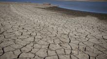 'Dire situation': Silicon Valley cracks down on water use as California drought worsens