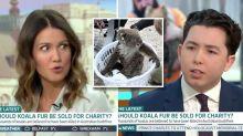 'It's grotesque': Apprentice star's 'sick' suggestion for dead koalas after bushfires