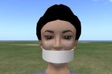 Linden Lab staff gagged? Unable to post to official blog