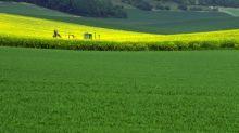 Biocontrôle, biostimulants : l'agriculture version 21è siècle est arrivée !