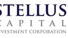 Stellus Capital Investment Corporation to Report 2019 Annual Financial Results and Hold Conference Call